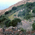 Ikaria's remotest hinterland 11 - traditional, fenced and protected