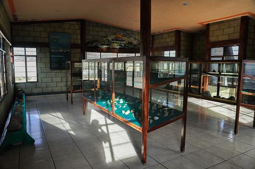 San Juan Raya - Museo (69)