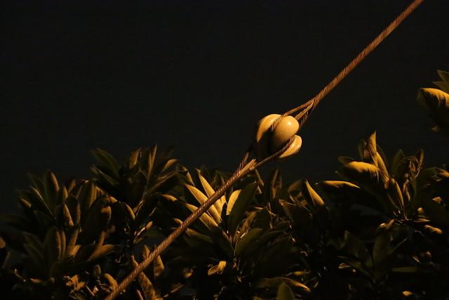 川崎 工場夜景