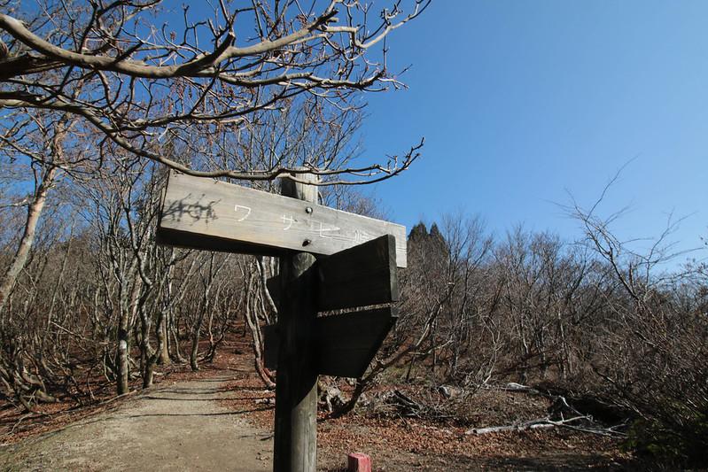 20141122-武奈ヶ岳&京都ライトアップ-0161.jpg