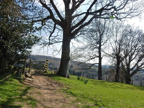 Ridge, trees, gate.