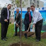 49th Annual Meeting: Tree Planting at Goethe University