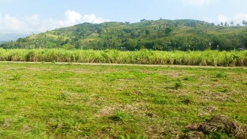 P16-Negros-San Carlos-Dumaguete-Route (9)