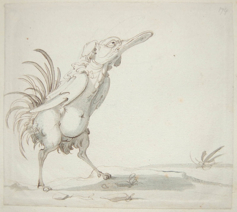 Arent van Bolten - Monster 174, from collection of 425 drawings, 1588-1633