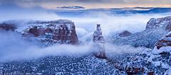 Fresh Snow & Fog (1-19-16)