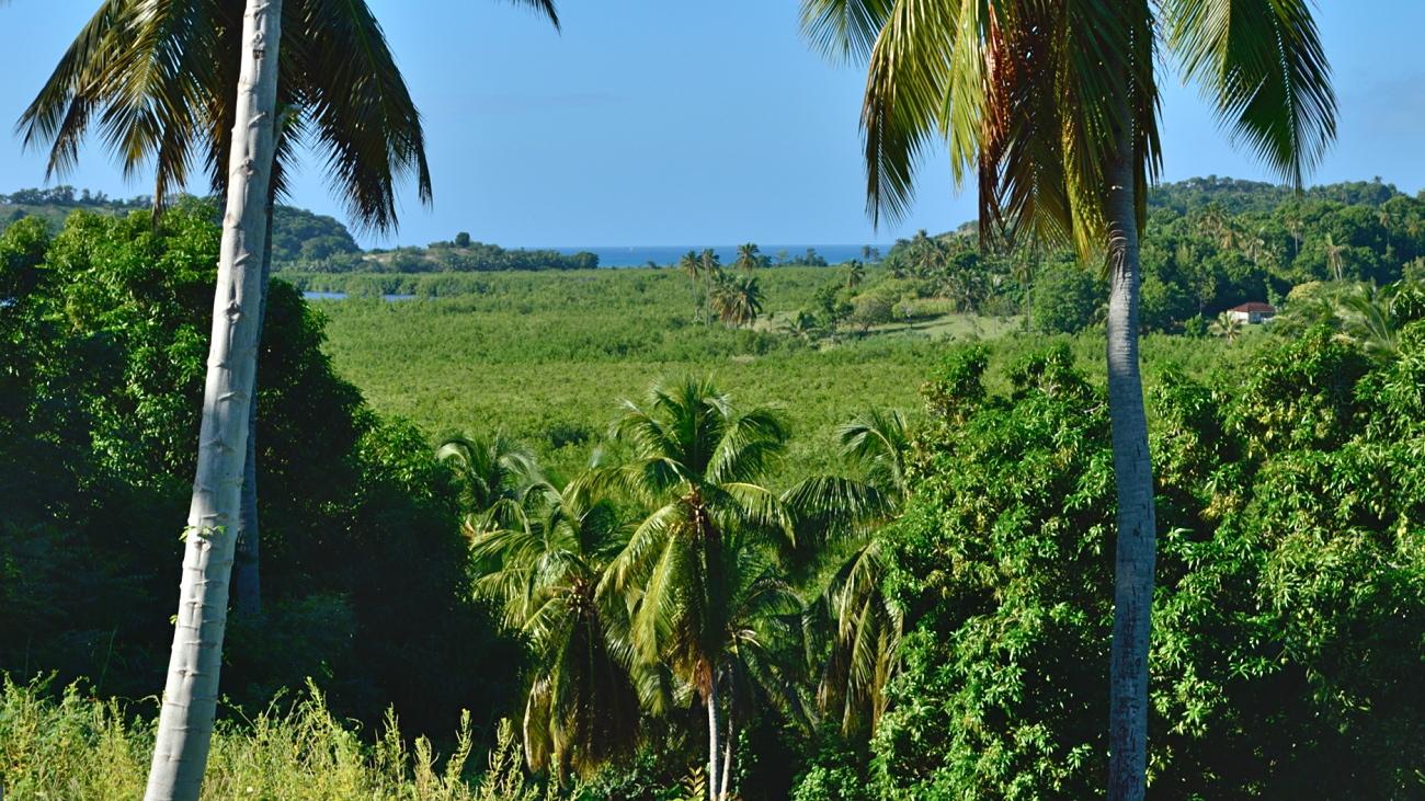 haiti 18