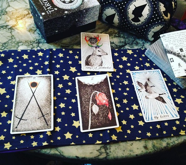 Quick tarot reading for myself yesterday at Popovers while waiting for a brownie. Quite pleased! #tarot #tarotcards #tarotreadings #wildunknown #wildunknowntarot