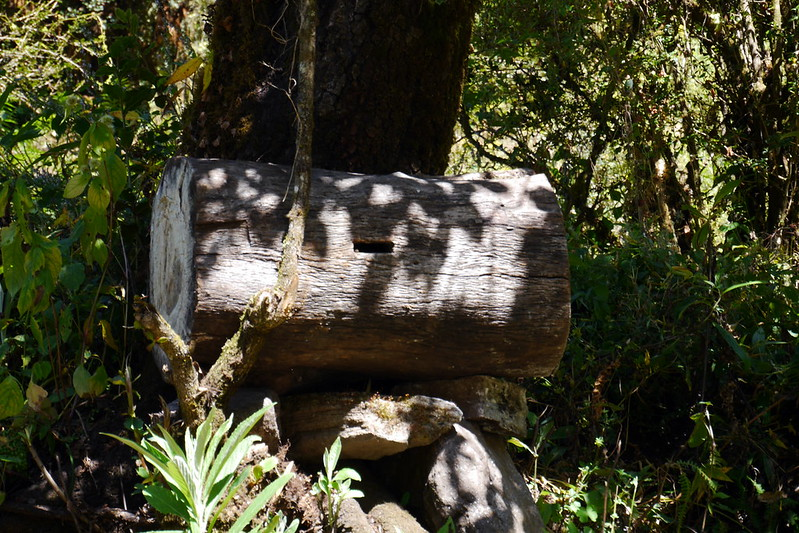 Beehive Log