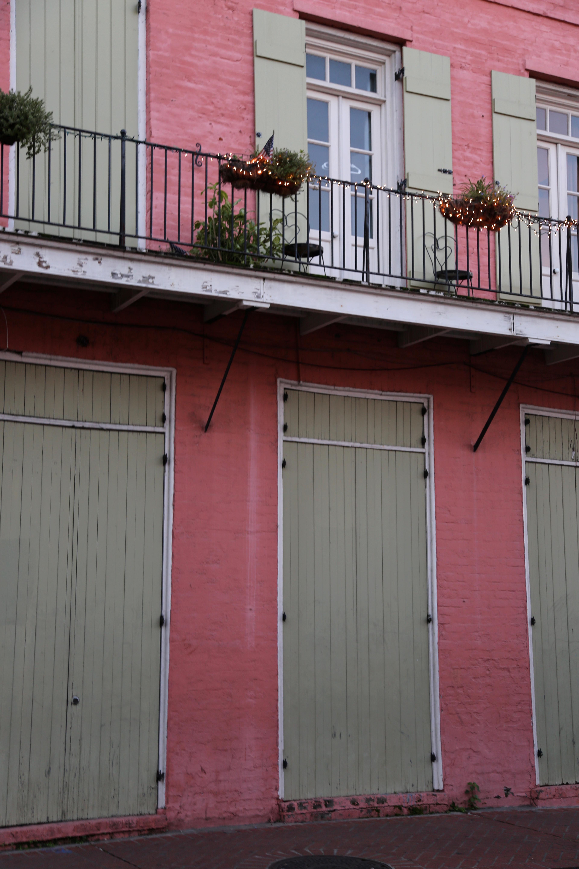 nola pink wall