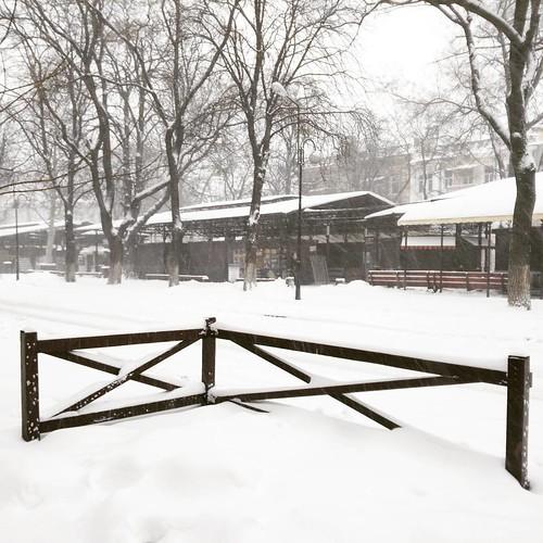 Snowfall #snow #odessa_ukraine #mycity