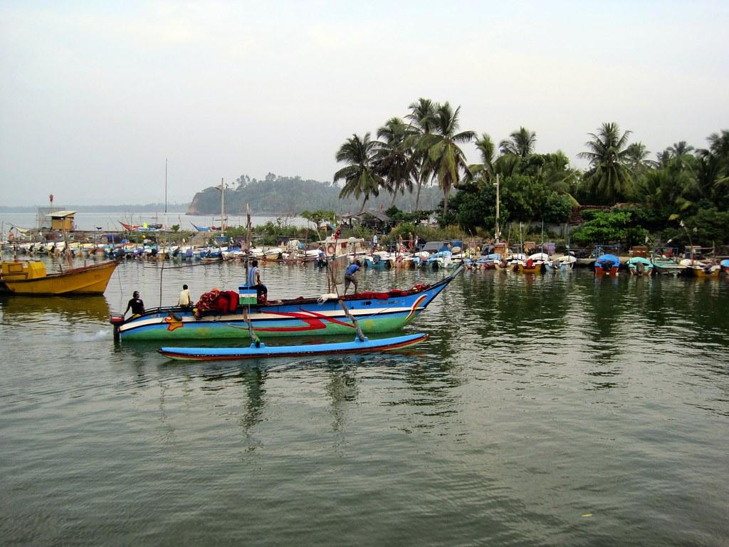 2012 Sri Lanka - Whale-Watching-Tour
