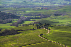 Val d'Orcia by gianmarco giudici