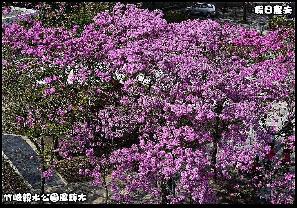 竹崎親水公園風鈴木DSC_0066