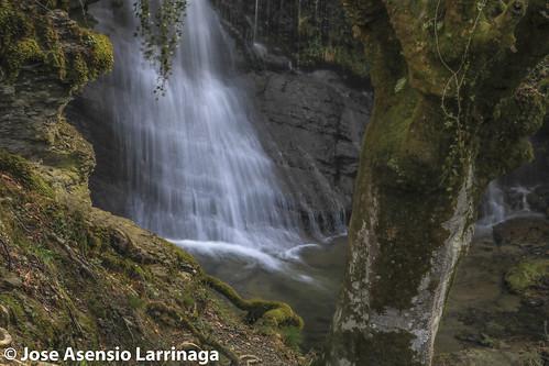 Parque Natural de Gorbeia  #DePaseoConLarri #Flickr -3094