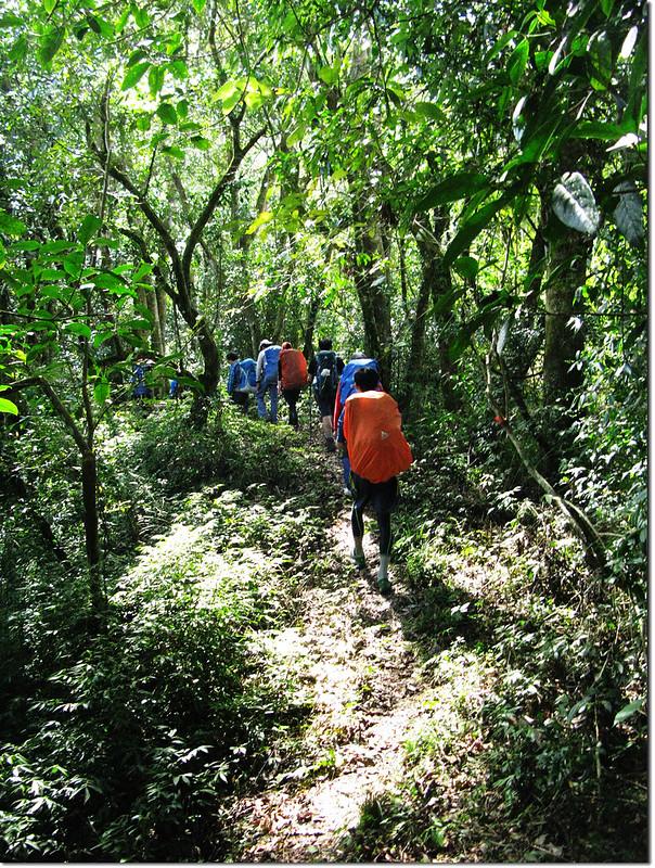 斯拉巴庫山登山途中景觀 1