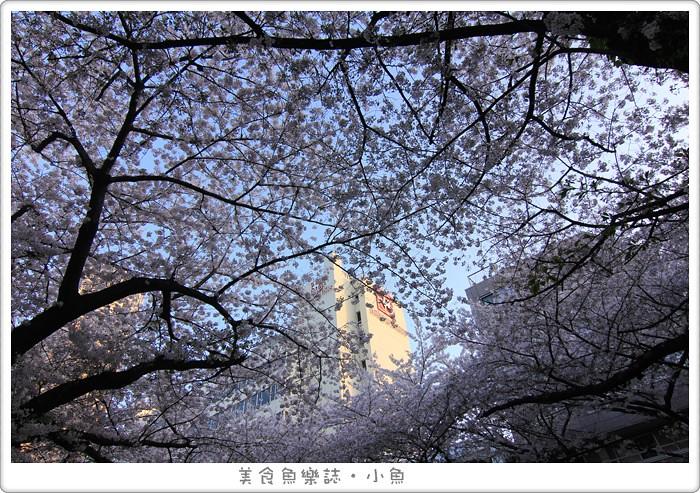 【日本東京】2015賞櫻之旅Day1 關東第一賞櫻名所目黑川/夜櫻 @魚樂分享誌