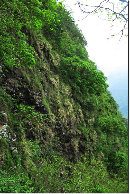 垂直岩壁區 1