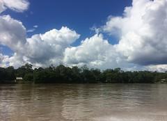 The Amazon Peru