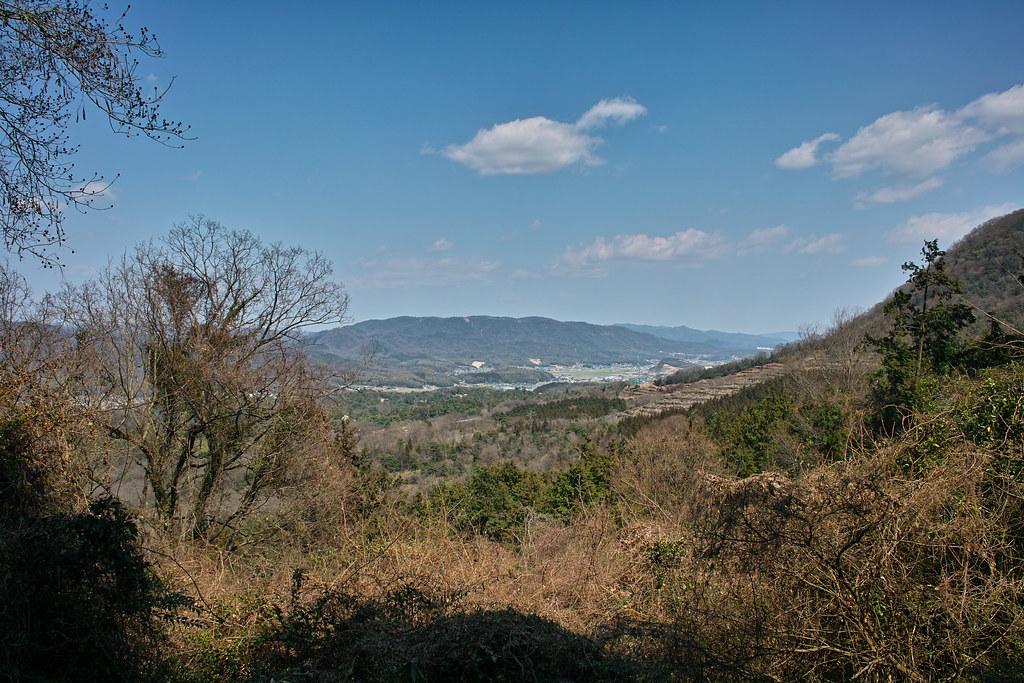 県道282からの景色