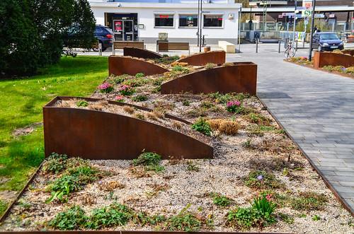 Bepflanzung Gehweg gen Bahnhof seitlich des Heegewaldparks 454
