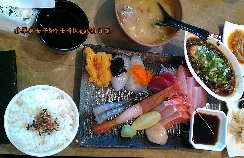 毅壽司平價日式料理築地生魚片蓋飯鮮魚金泰日本料理27