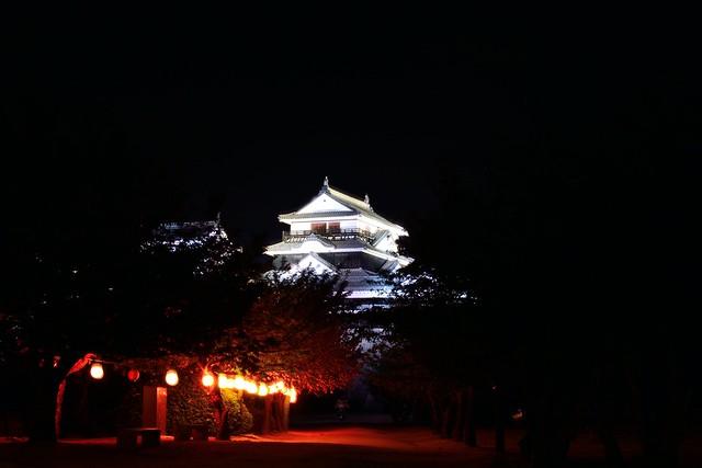 松山城夜景