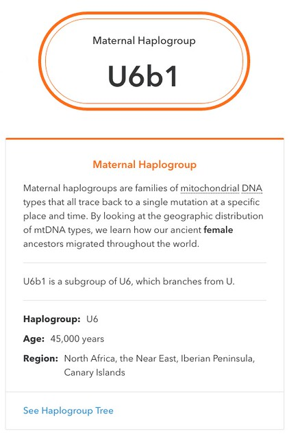 Maternal Haplogroup U6b1
