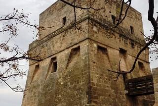 Torre a Mare. La Torre pelosina front