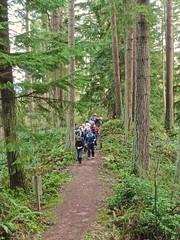 On Big Tree Ridge