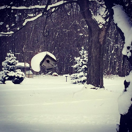 Snow days! #michiganlove #pawpawlakelove