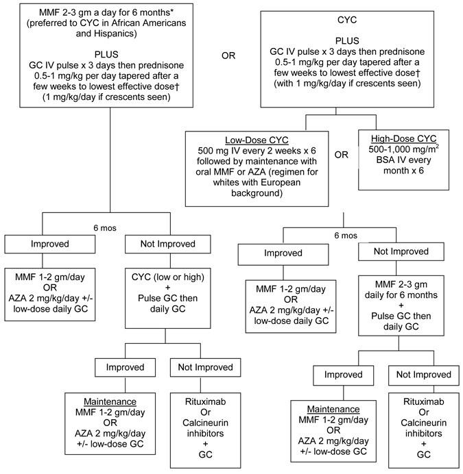 Lupus Treatment Chart