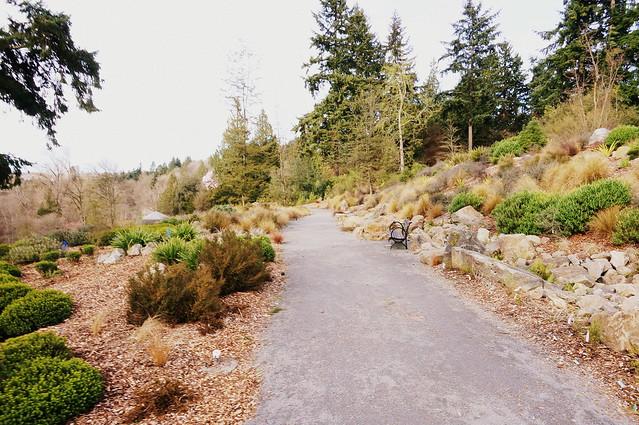 arboretum cinemascope