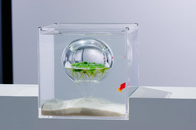 """魚缸設計展_請各位幫忙到臉書按""""讚"""""""