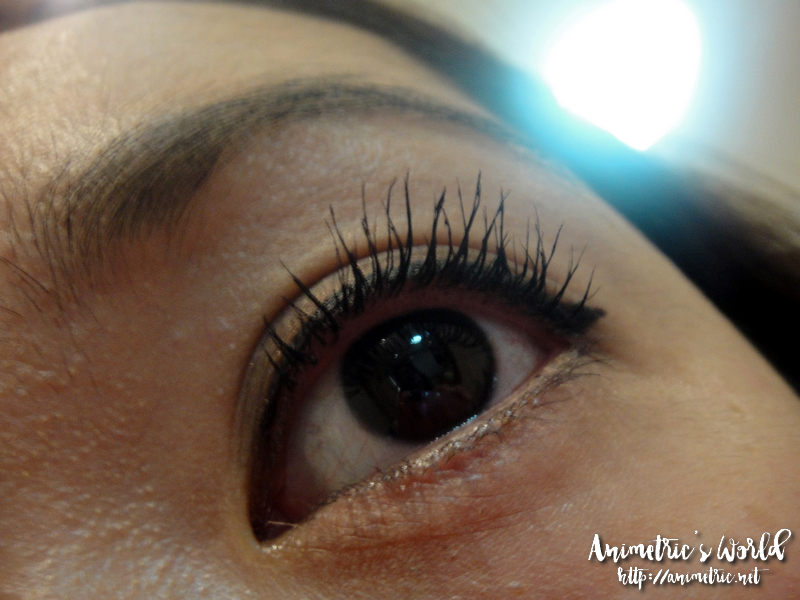 Etude House Lash Perm All Shockcara Review