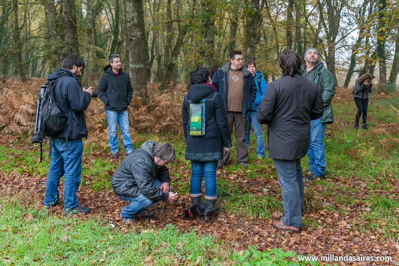 Grupo reunido en el bosque da Fervenza