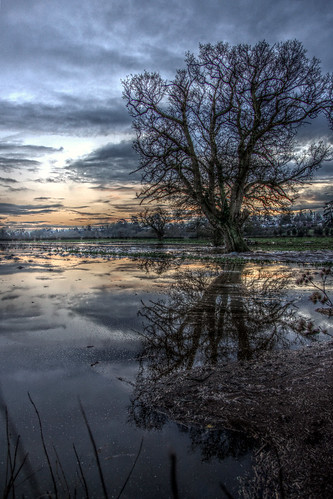 Flooded fields in Hallow