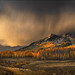 Autumn Storm Light by Zack Schnepf