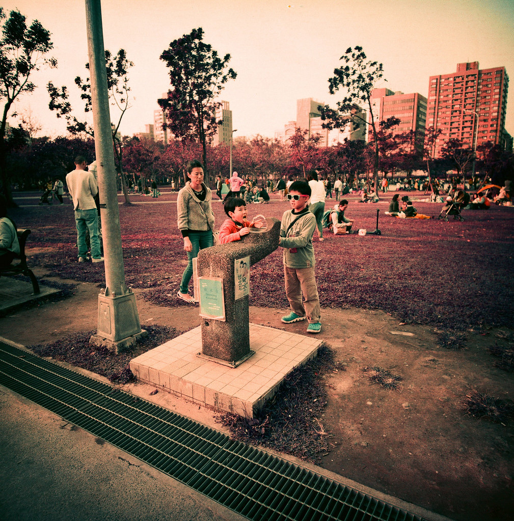 大安森林公園 / Purple / Lomo LC-A 120 難得出現好天氣,就一定要出門曬太陽、拍照!  Lomo LC-A 120 Lomography LomoChrome Purple XR 100-400 120mm 6494-0007 2015/01/09 Photo by Toomore