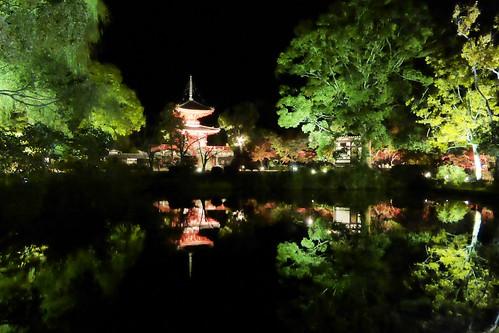 Daikaku-ji, Shingyohoto (Pagoda) -1 (November 2013)