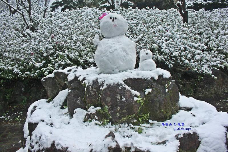 2016-台北陽明山-瑞雪-難得一見的雪白山景-17度C隨拍 (126)