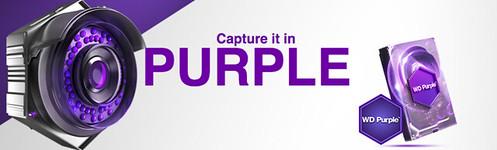 Capture it in PURPLE