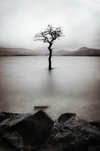 Loch Lomond // 07 02 16