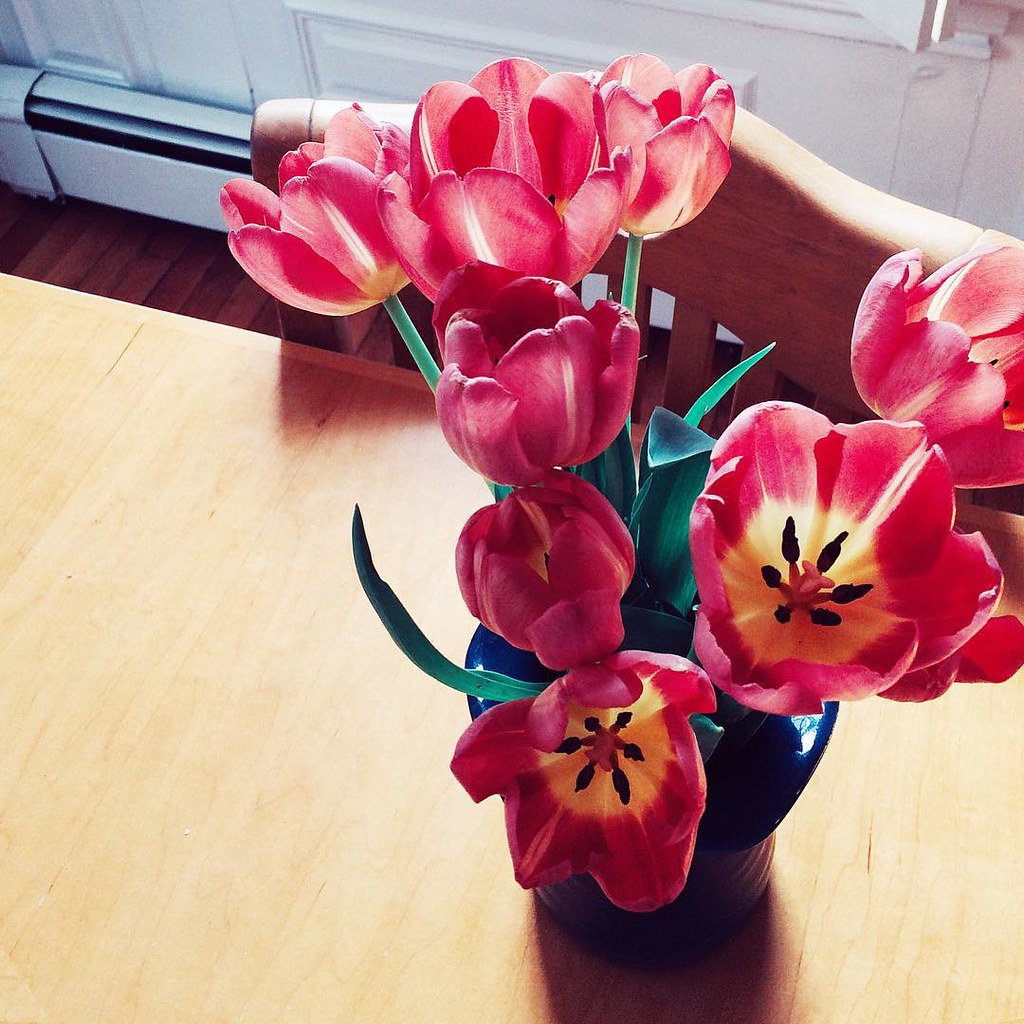 Happy March! #springiscoming #tulips #flowers #floral #march #happymarch