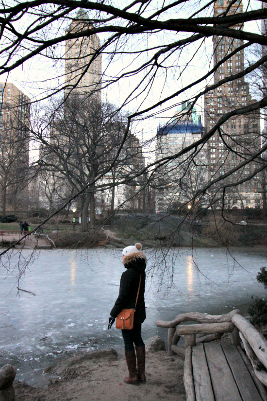Hi Sugarplum | Winter in NYC
