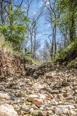 Snake Creek