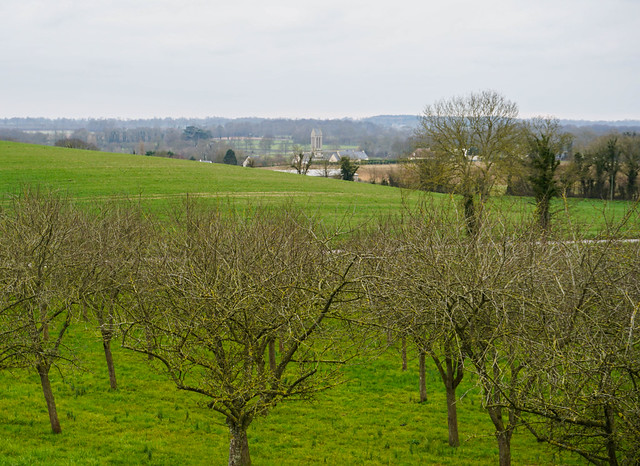 Normandy-101.jpg