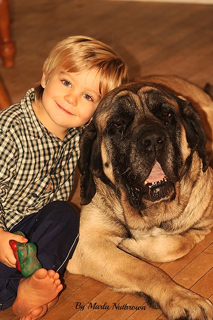 (Missed moments)...A boy and his dog