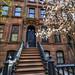 Casa Carrie Bradshaw by lautada