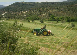 Agricultural Scene Potamia Valley Lesvos May 2015