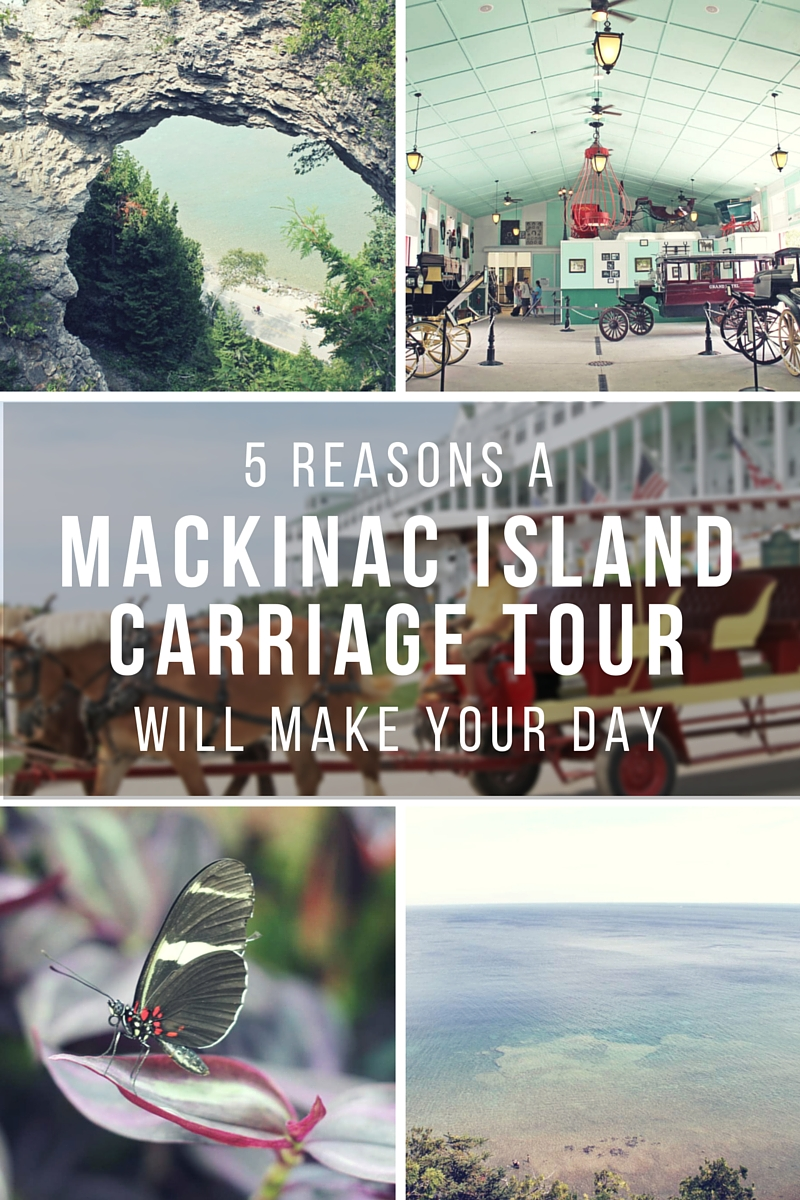 5 Reasons A Mackinac Island Carriage Tour Will Make Your Day (via Wading in Big Shoes)